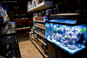 Products in the Crystal Clear Aquariums retail location