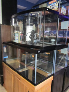 New and Used Aquariums at Crystal Clear Aquariums in the Gallatin Valley
