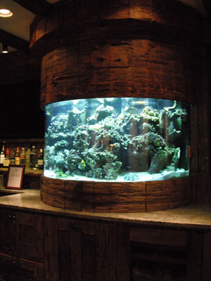 custom-aquariums-(2)